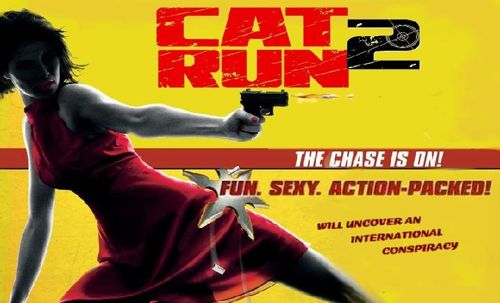 Cat-Run-2
